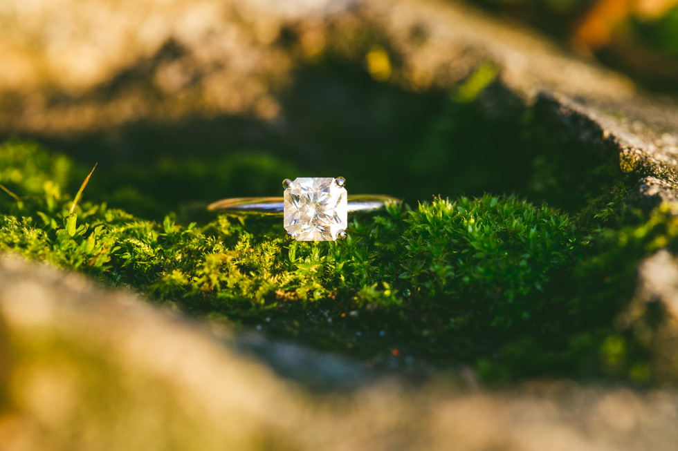 15-lincoln-park-engagement-ring-photo