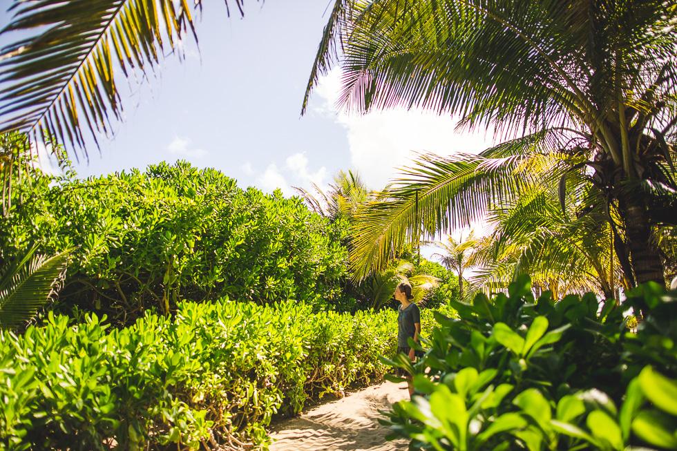 17-cancun-happydaymedia