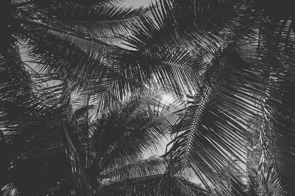 19-cancun-happydaymedia